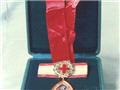 南丁格尔奖章近照
