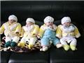 出生不久的四胞胎煞是可爱