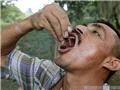 哥伦比亚人把蚂蚁当零食