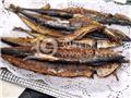 油炸系列:秋刀鱼