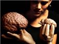 大脑取样:从大脑活体中取出大脑细胞,分析哪些基因处于打开状态,哪些基因处于关闭状态。