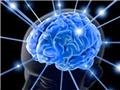 光基因法:利用光束控制大脑行为。