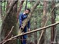 探究日本人阴森恐怖的自杀圣地