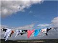 毒隐于衣:全球品牌服装的有毒有害物质残留调查