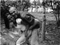战地摄影师与女杀手的悲凉爱情