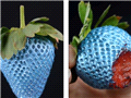 世界首款可食用喷漆问世