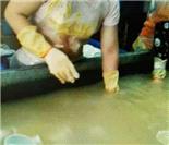 消毒餐具加工场地曝光:污水横流 垃圾遍地