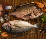 生的或未经加工熟的贝甲类海产品
