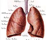 12个最易发生癌变的人体器官