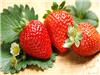 神奇!常吃5种水果修复肝细胞