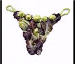 蔬果也能穿在身上!!