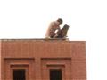 大学男女楼顶公开做爱被拍[图集]