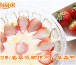瘦身厨房:春季减肥甜点草莓布丁