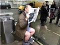 让人脸红心跳的伦敦透明厕所