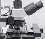 5.精子图像分析系统
